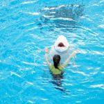 シロイルカと泳ぐには、どこへ行けばいい?